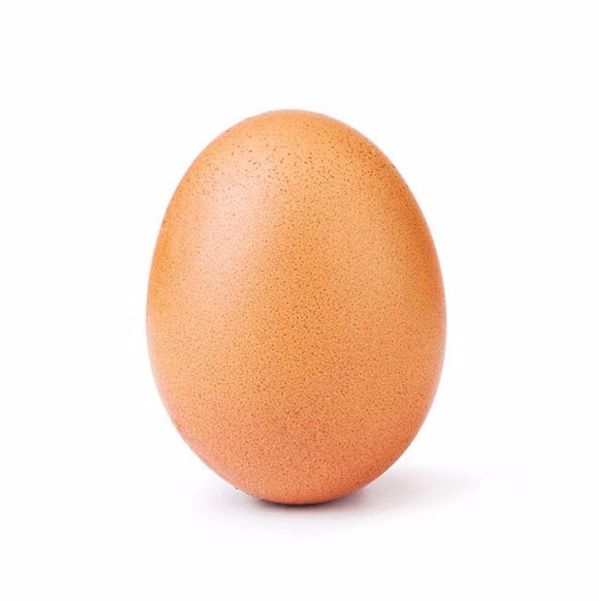 The most liked Instagram post of 2019 by @world_record_egg