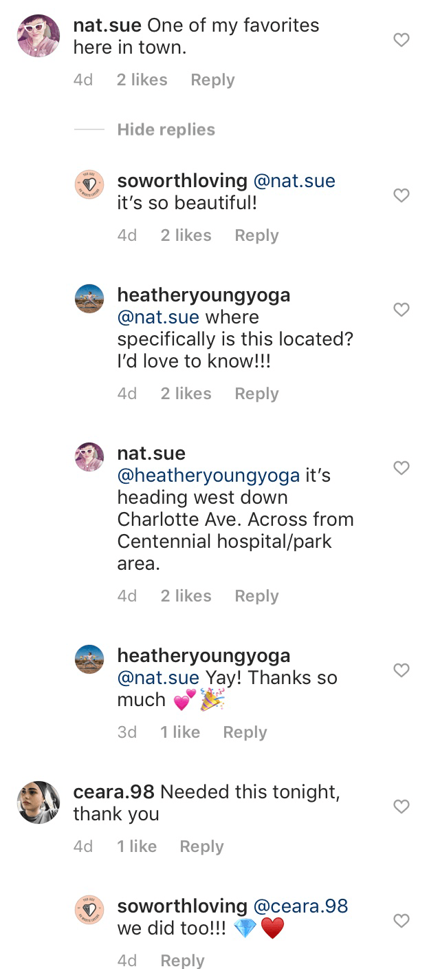 Comments section of the Instagram post by @soworthloving
